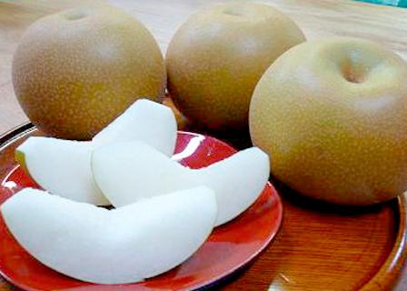 千葉県産 地域ブランド 「市川の梨」 秋月(あきづき) 5kg