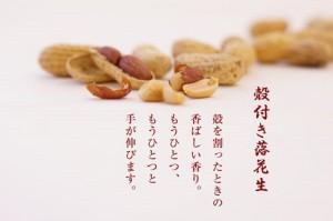 与三郎の豆 殻付き落花生