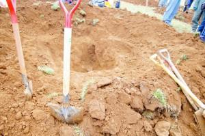 穴掘り大会計測待ち