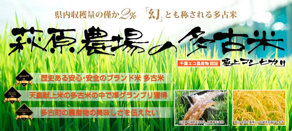 萩原農場の多古米