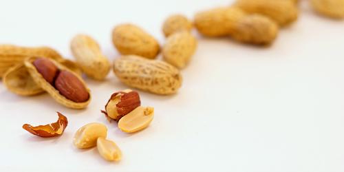 与三郎の豆の落花生