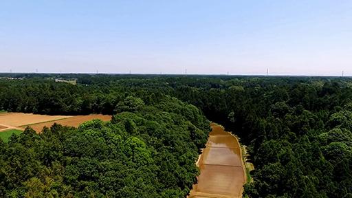萩原農場の谷津田の圃場上空